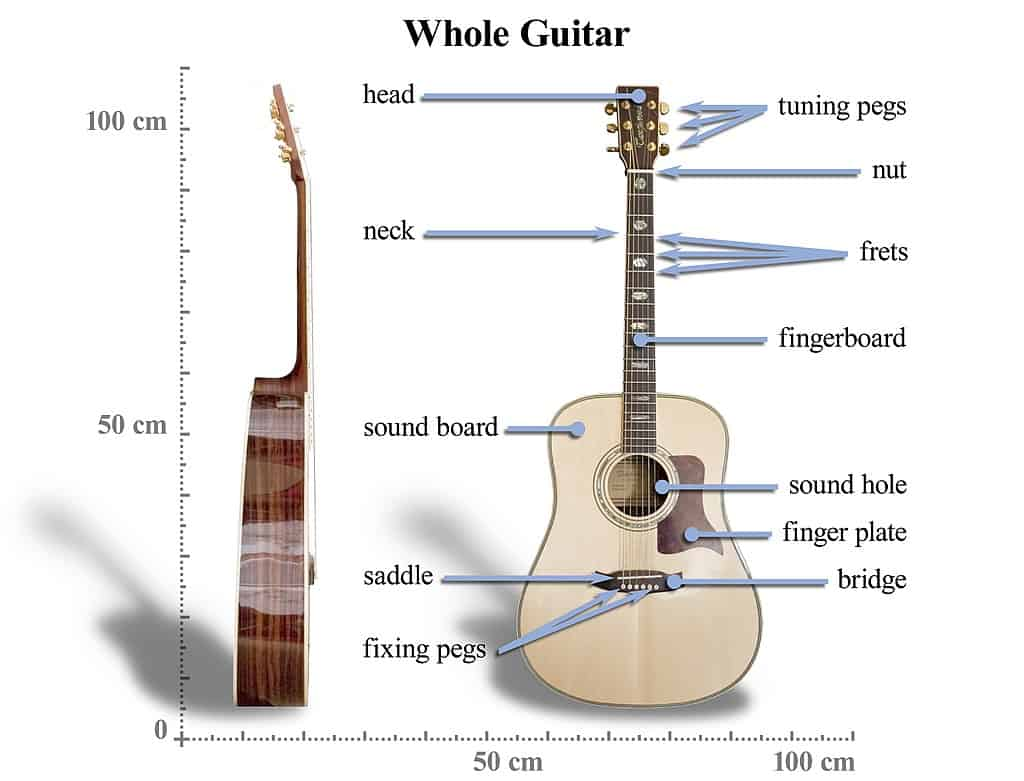 how to learn to play an acoustic guitar - Acoustic Guitar Anatomy